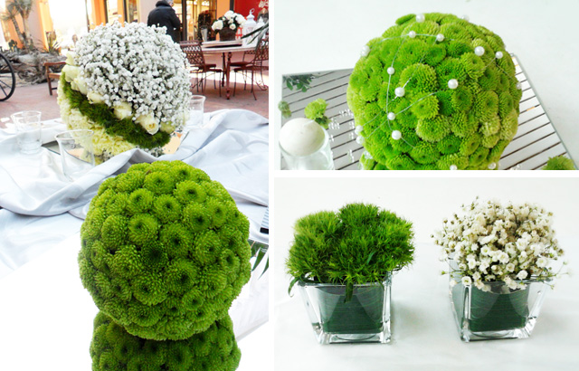 Verde acido la gardenia for Fiori verdi